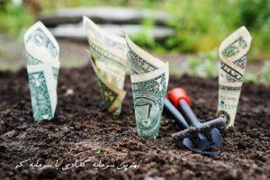 بهترین سرمایه گذاری با سرمایه کم