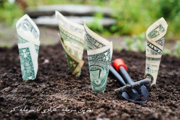 بهترین سرمایه گذاری با سرمایه کم در ایران