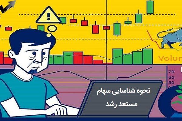 نحوه شناسایی سهام مستعد رشد در بورس