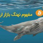 نهنگ بازار ارز دیجیتال به چه کسی گفته میشود؟
